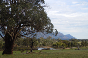 Photo of Grampians